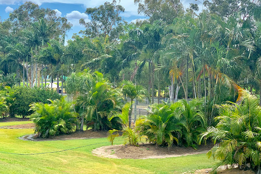 Semi Private unpowered camp sites at Brisbane Holiday Village
